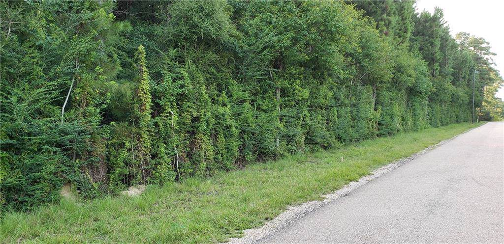 53019 Bennett Road - Photo 1