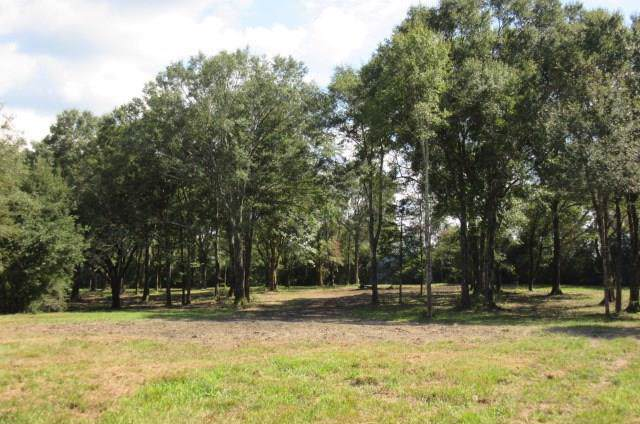 Dummyline Road, Amite, LA 70422 (MLS #2223954) :: Top Agent Realty