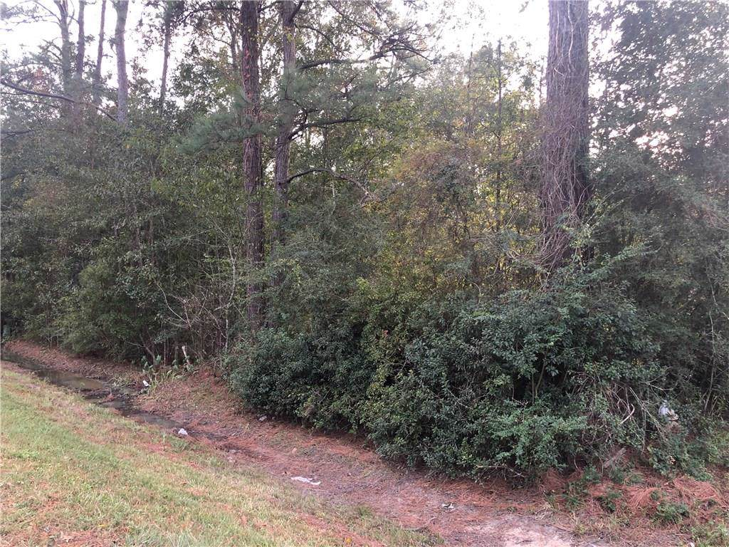 Pine Hill Road - Photo 1