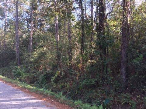 Lot 5 Durnin (Vacant Land) Drive, Lacombe, LA 70445 (MLS #2232047) :: Reese & Co. Real Estate