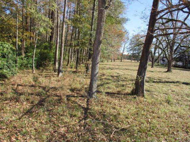 13500 Hwy 25 Highway, Franklinton, LA 70438 (MLS #2232266) :: Amanda Miller Realty