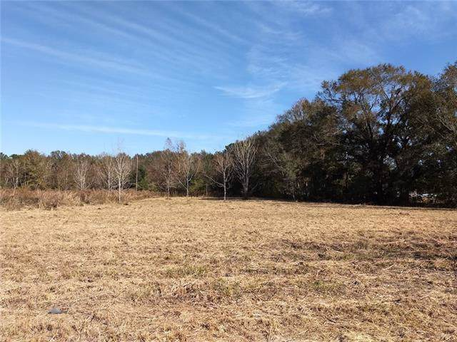 Terral Road, Robert, LA 70455 (MLS #2233215) :: Top Agent Realty
