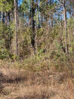 S Tanquility (West Of) Road, Lacombe, LA 70445 (MLS #2235970) :: Robin Realty