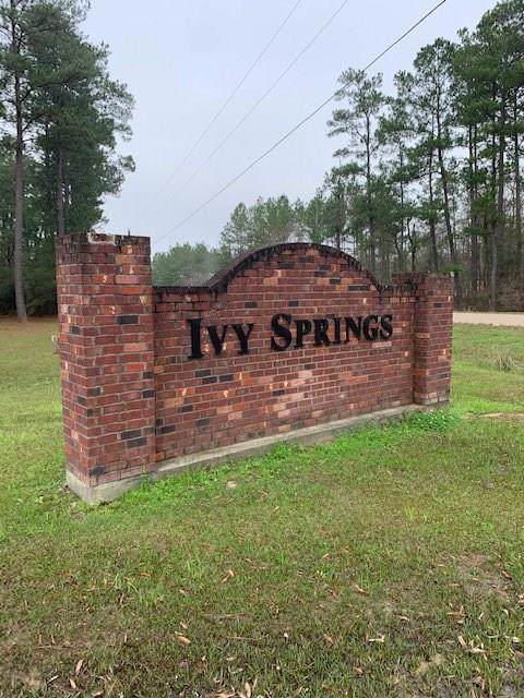 Ivy Springs Drive, Independence, LA 70443 (MLS #2237741) :: Turner Real Estate Group
