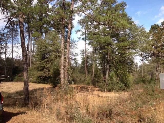 Isabel Swamp Road, Bush, LA 70431 (MLS #2238778) :: Turner Real Estate Group