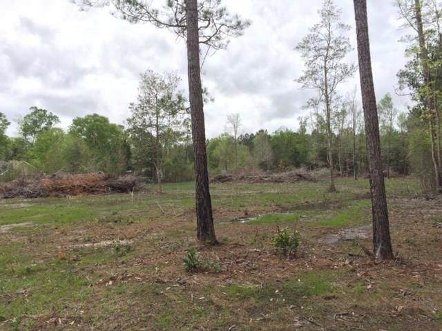 Lot 31 Charles Kelly Road, Bush, LA 70431 (MLS #2242355) :: Top Agent Realty