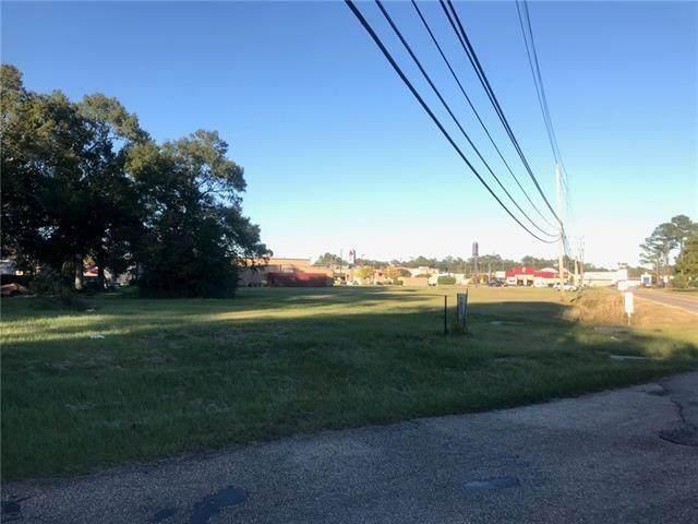 100 Camellia Avenue, Hammond, LA 70403 (MLS #2244135) :: Turner Real Estate Group