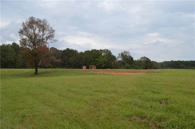 30312 Hwy 430 Highway, Franklinton, LA 70438 (MLS #2252954) :: Watermark Realty LLC