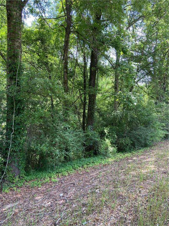 Hwy 51 Highway, Kentwood, LA 70444 (MLS #2253852) :: Robin Realty