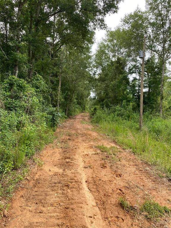 +/-159 ACRES Highway 424 Highway, Franklinton, LA 70438 (MLS #2254776) :: Watermark Realty LLC