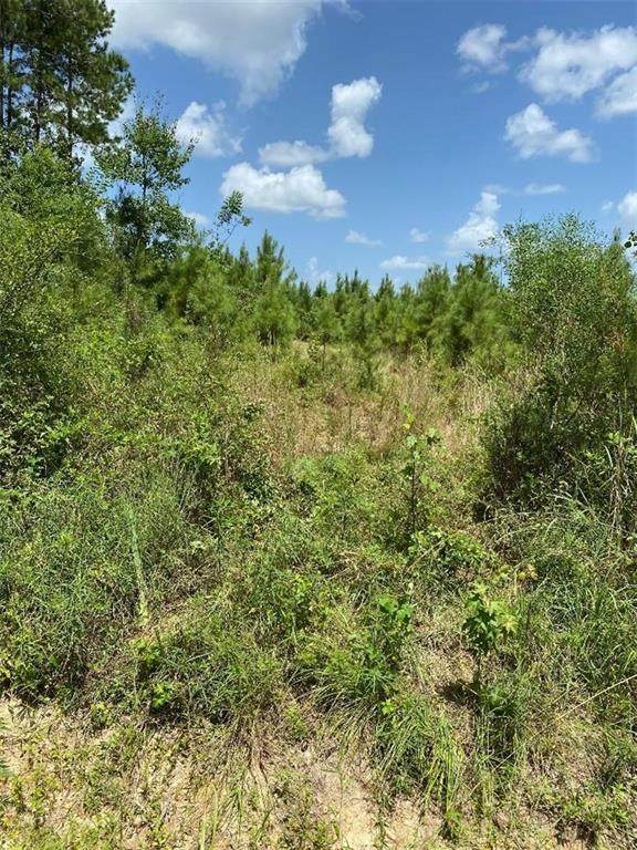 +/-81 ACRES Pico Road, Franklinton, LA 70438 (MLS #2264959) :: Amanda Miller Realty