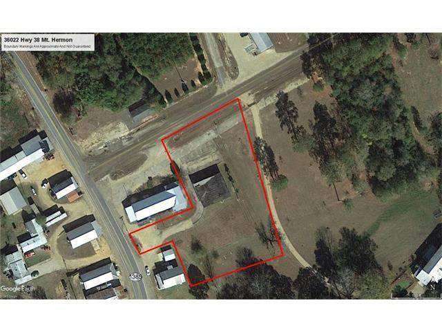 36022 38 Highway, Mt. Hermon, LA 70450 (MLS #2266943) :: Turner Real Estate Group