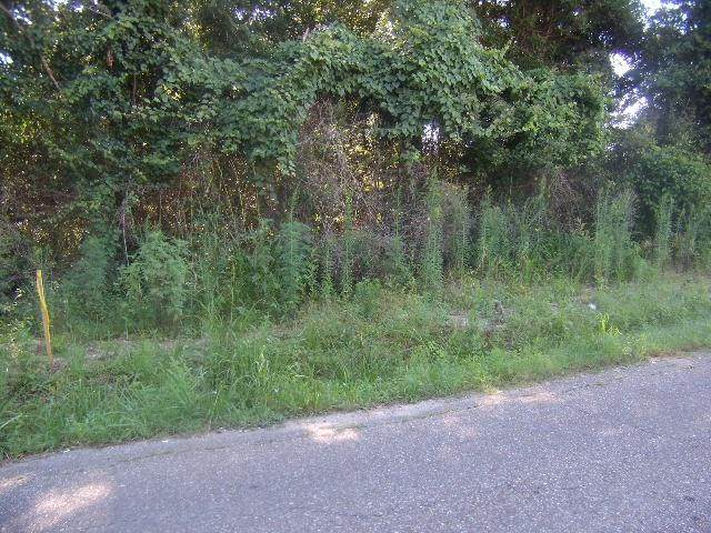 Hillcrest Boulevard, Abita Springs, LA 70420 (MLS #2266956) :: Parkway Realty