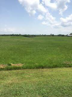 Lot 49 S Chenier Drive, Madisonville, LA 70447 (MLS #2270232) :: Top Agent Realty