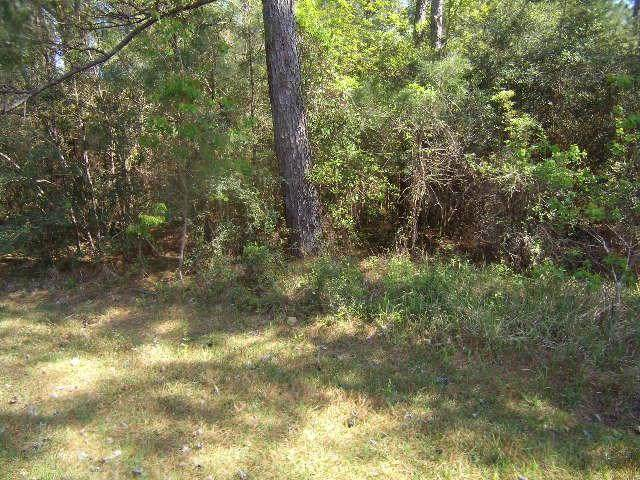 Heintz Street, Abita Springs, LA 70420 (MLS #2271547) :: Reese & Co. Real Estate