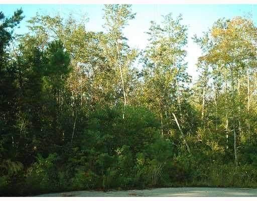 Lot 315 Parlange Drive, Pearl River, LA 70452 (MLS #2275097) :: Reese & Co. Real Estate
