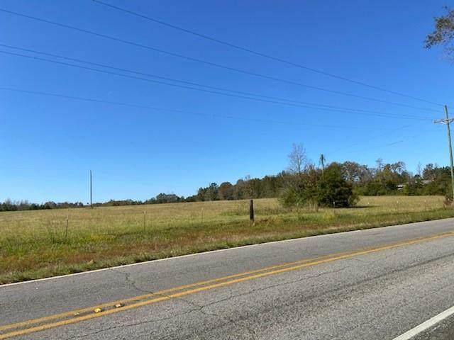 71251 La-1051 Highway - Photo 1