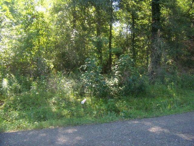 La Hwy 435 Highway, Abita Springs, LA 70420 (MLS #2279478) :: The Sibley Group