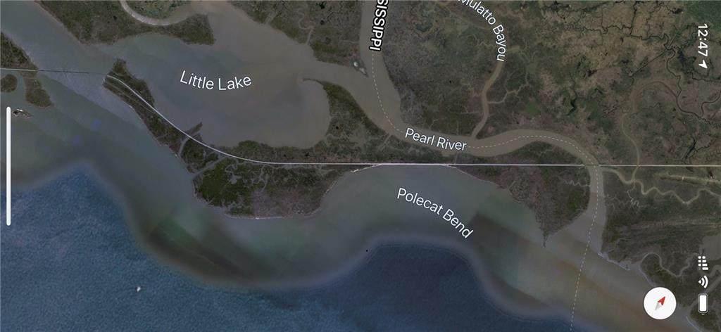Pearl River Island - Photo 1