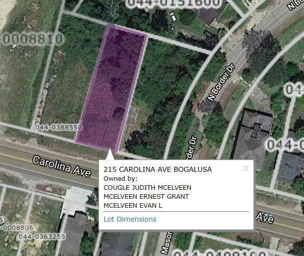 215 Carolina Avenue, Bogalusa, LA 70427 (MLS #2283694) :: Turner Real Estate Group