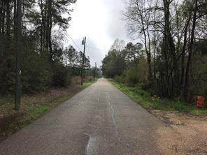 Tract E Blahut Road - Photo 1