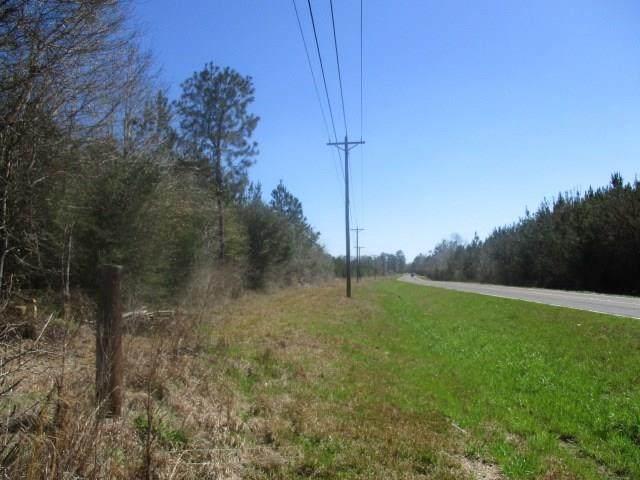 Lot 1 Hwy 1072 Highway, Franklinton, LA 70438 (MLS #2284946) :: Satsuma Realtors