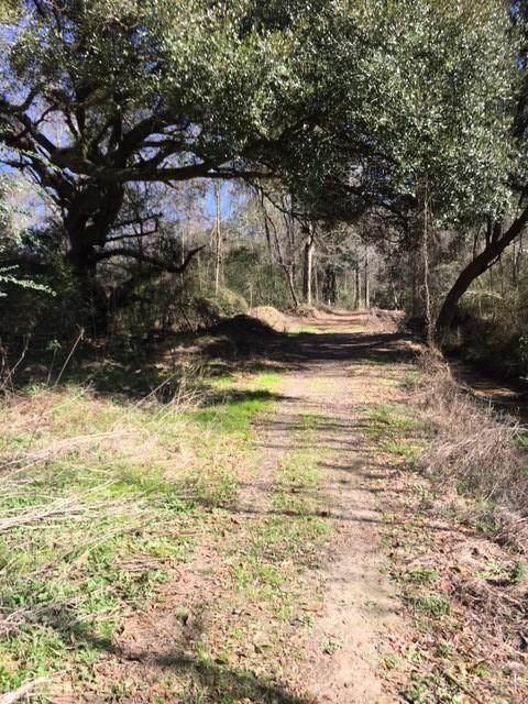 Jolane Drive, Ponchatoula, LA 70454 (MLS #2287823) :: Satsuma Realtors
