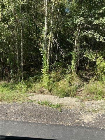 2.1018 ACRES +/- Highway 445 Highway, Robert, LA 70455 (MLS #2296568) :: Reese & Co. Real Estate