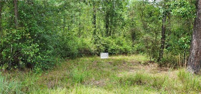 80703 Hwy 21 Highway, Bush, LA 70431 (MLS #2310867) :: United Properties