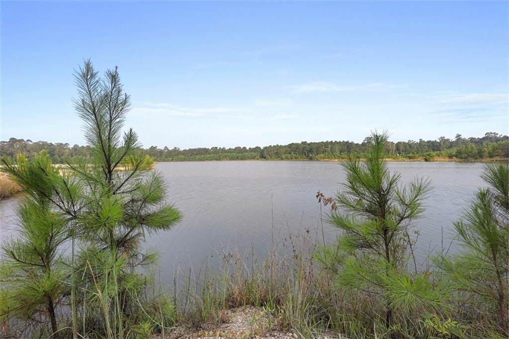 263.68 acres Cassie Drive - Photo 1