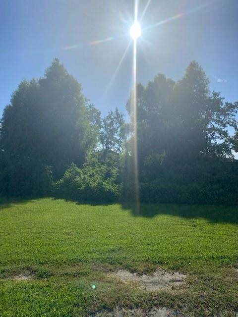 4864 Lafon Drive - Photo 1