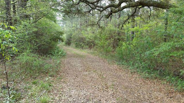 37285 Dummyline Road, Pearl River, LA 70452 (MLS #2317149) :: Robin Realty