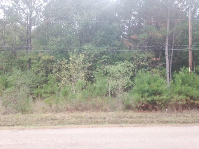 48363 Hwy 1065 Highway, Hammond, LA 70403 (MLS #2034904) :: Turner Real Estate Group