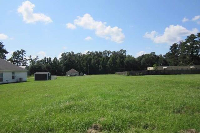 Bea's Nursery Road, Albany, LA 70403 (MLS #2122071) :: Robin Realty