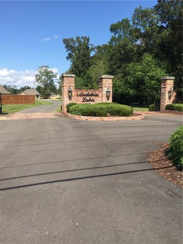 44167 Audubon Circle, Hammond, LA 70403 (MLS #2127905) :: Crescent City Living LLC