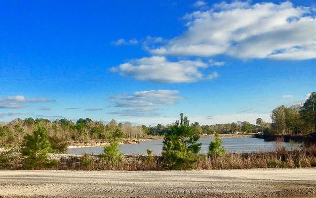 100 Uncle Son's Drive, Denham Springs, LA 70726 (MLS #2141150) :: Turner Real Estate Group