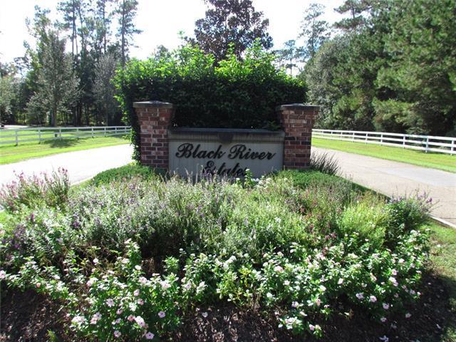 Black River Lot 76 Drive, Madisonville, LA 70447 (MLS #2144295) :: Turner Real Estate Group