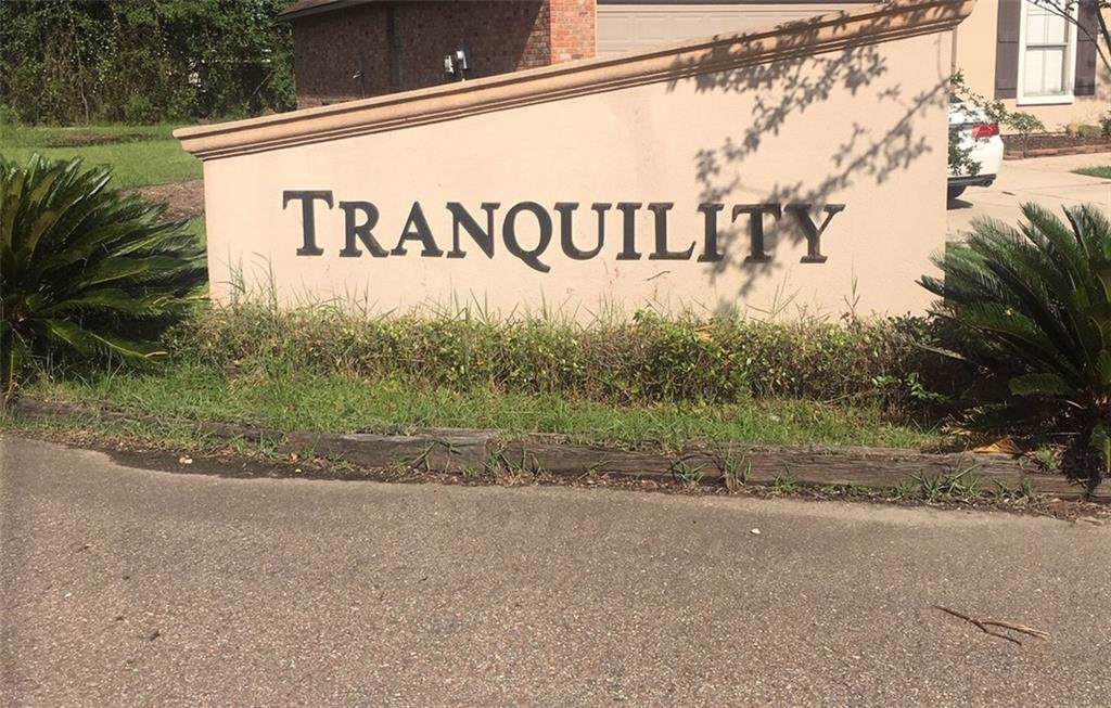 45548 Tranquil Trace - Photo 1