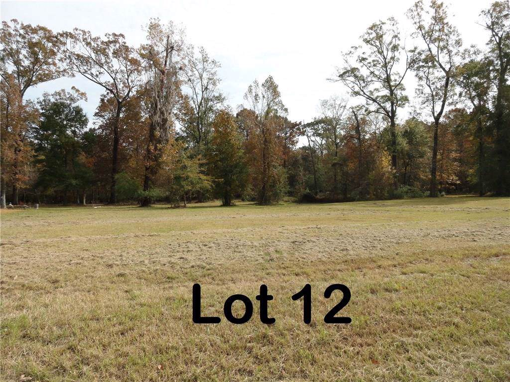 Lot 12 Sierra Ridge Court - Photo 1