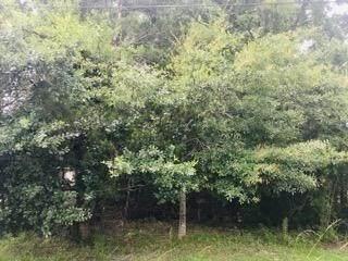 G-18 Mulberry Circle, Ponchatoula, LA 70454 (MLS #2253340) :: Amanda Miller Realty