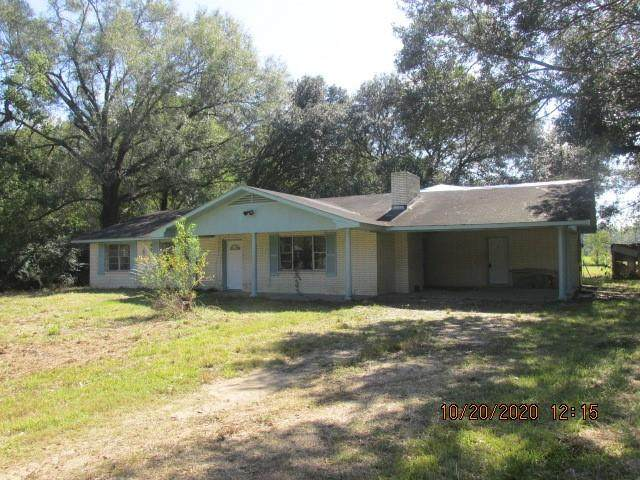 11250 Wardline Road, Hammond, LA 70403 (MLS #2271963) :: Turner Real Estate Group
