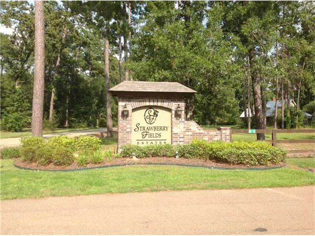 Blakemore Drive, Ponchatoula, LA 70454 (MLS #960587) :: Turner Real Estate Group
