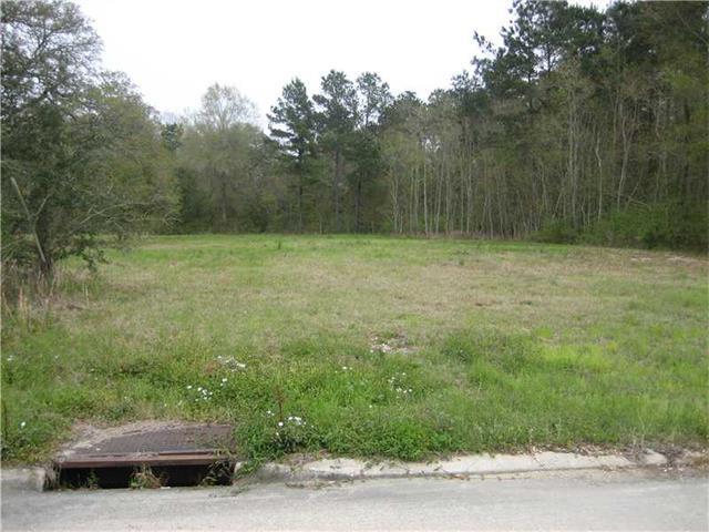 129 Robin Hood Boulevard, Hammond, LA 70403 (MLS #972183) :: Turner Real Estate Group