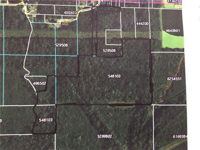 Highway 51 N Live Oak Highway, Roseland, LA 70456 (MLS #2110625) :: Turner Real Estate Group