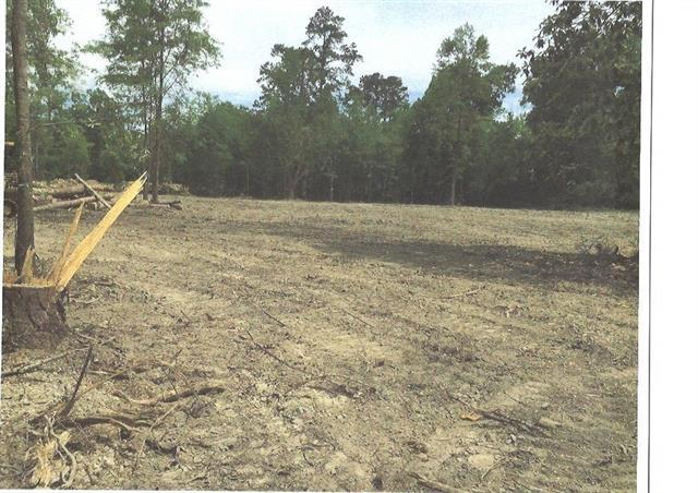 Lot 2 Pine Street, Covington, LA 70433 (MLS #2172933) :: Turner Real Estate Group