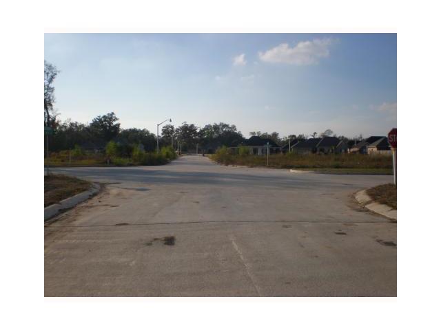 Luke Drive, Des Allemands, LA 70030 (MLS #756700) :: Turner Real Estate Group