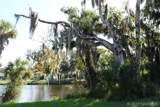 2910 Mango Tree Drive - Photo 25