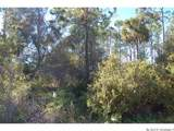 0 Hibiscus Drive - Photo 1