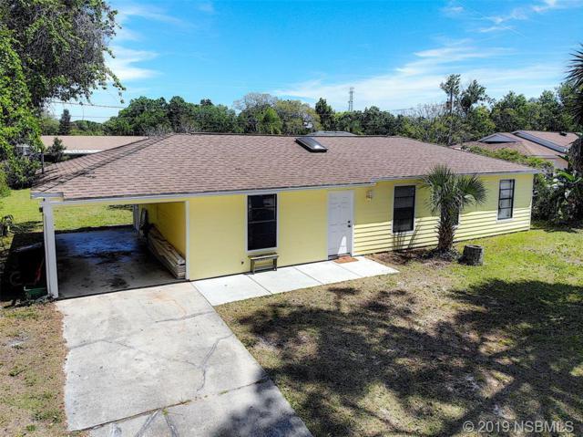 2525 Fern Palm Drive, Edgewater, FL 32141 (MLS #1050169) :: BuySellLiveFlorida.com