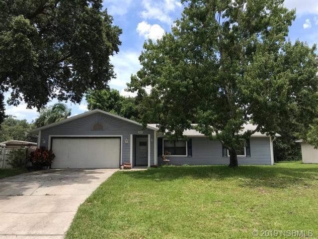 3215 Orange Tree Drive, Edgewater, FL 32141 (MLS #1050181) :: BuySellLiveFlorida.com
